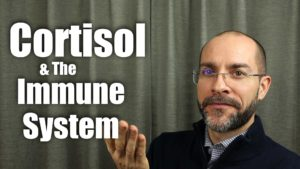 Dr. Dzvonick - Strengthen Your Immune System by Controlling Cortisol