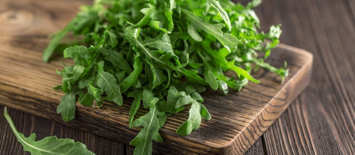 Fresh green arugula in bowl on table. Arugula rucola for salad. Close up of fresh green healthy food. Diet concept.